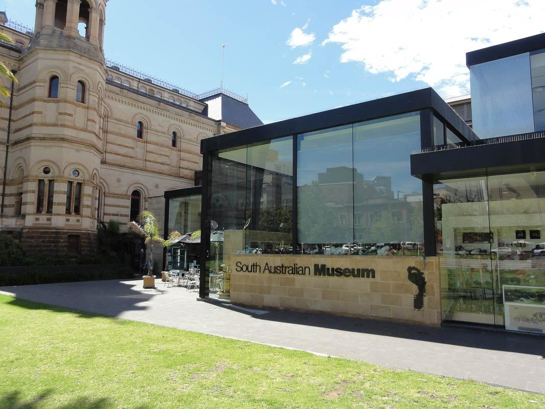 south australian museum is one of the best man made landmarks in south australia